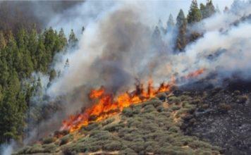 πολύ υψηλός κίνδυνος πυρκαγιάς σε τέσσερις περιφέρειες