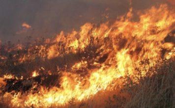 πυρκαγιά Άνδρος