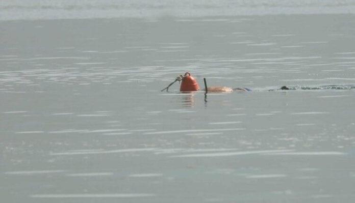 Πόρτο Ράφτη νεκρός ψαροτουφεκάς