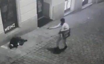 Βιέννη αιμοσταγής δολοφόνος σκοτώνει άνδρα