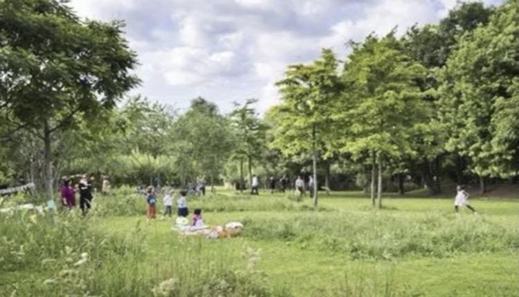 Επένδυση Ελληνικού χώροι πρασίνου