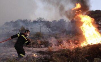 Φωτιά περιοχή Τουτουλη Μεγάρων