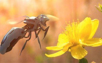 Μέλισσες ρομπότ